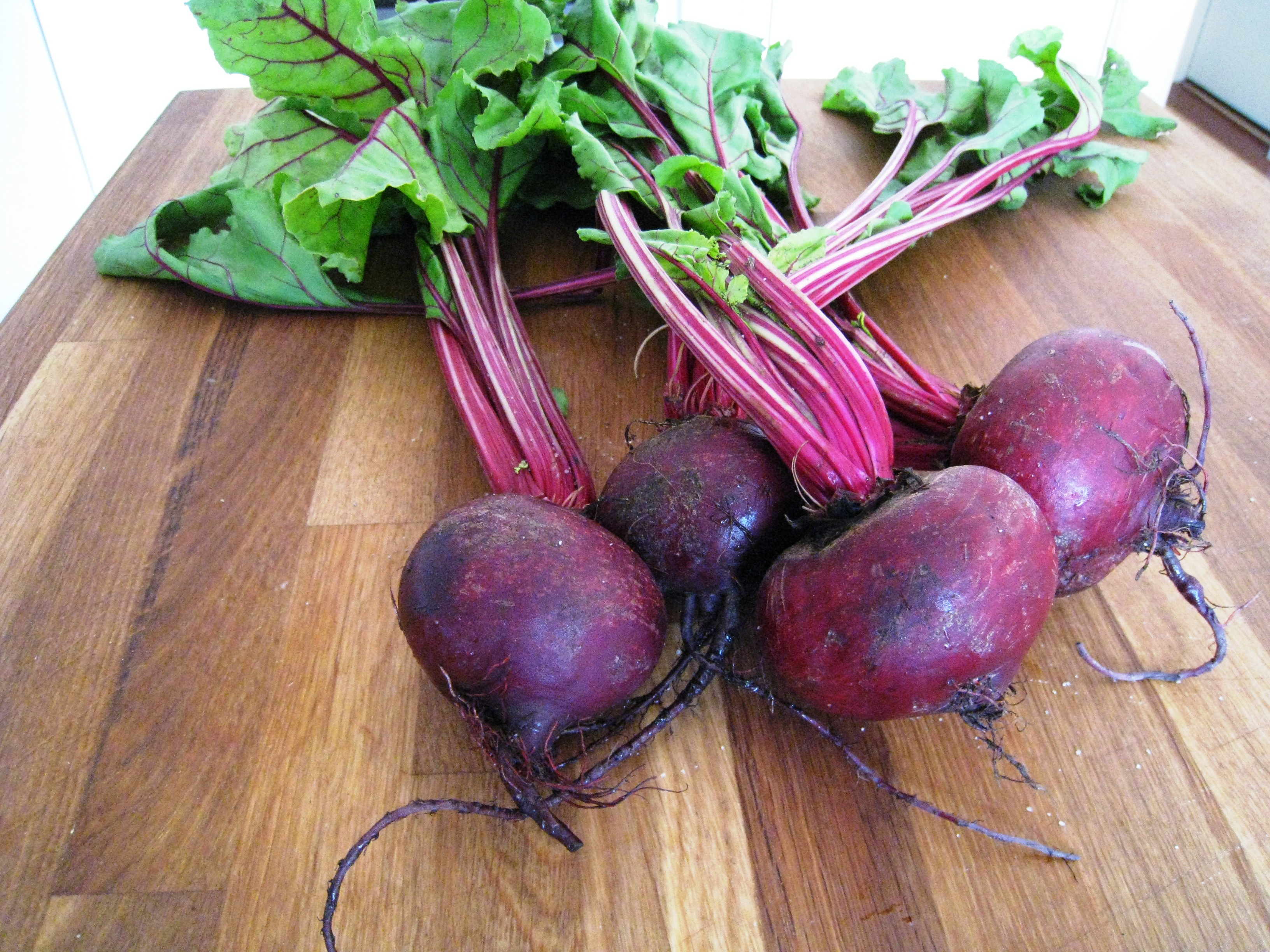 Beetroot (Beta vulgaris) - Medicinal : Herblore