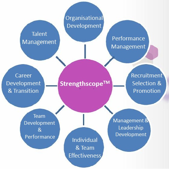 Strengthscope Reports, Products & Training at Talent Tools